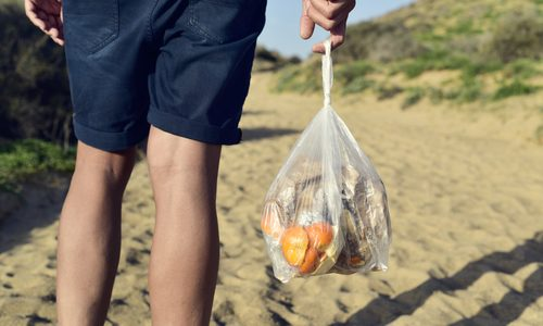"Boston Says ""No"" to Single-Use Plastic Bags Starting Next Month"